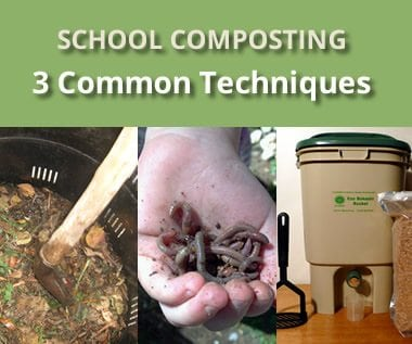 Setting up a school composting program: Part 2 – Common types of composting