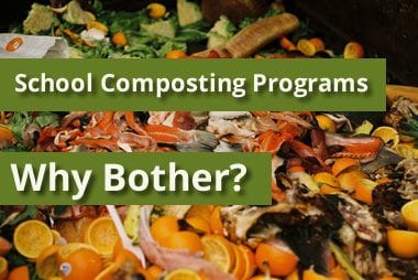 Setting up a school composting program: Part 1 – why bother?
