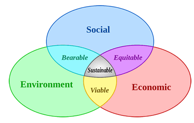 How to Set Up a Corporate Sustainability Program: Part 1