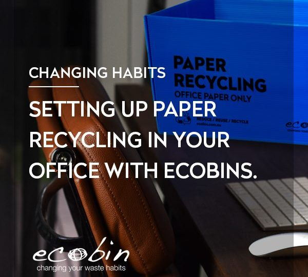 Setting up Paper Recycling in your Office with Ecobins