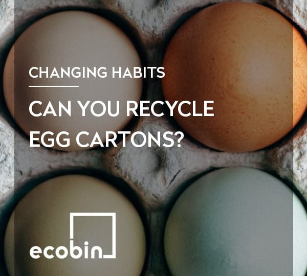 Can you recycle egg cartons?