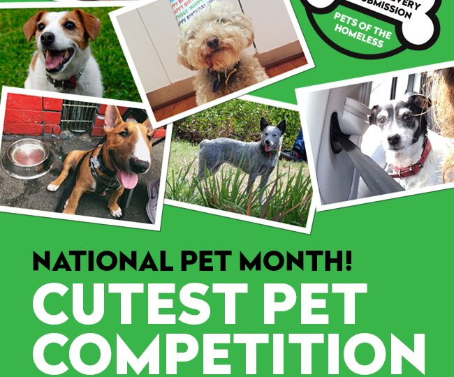 National Pet Month Competition